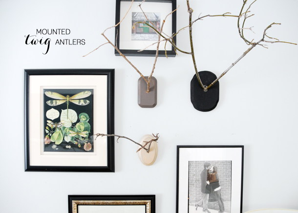Mounted Twig Antlers on www.earnesthomeco.com