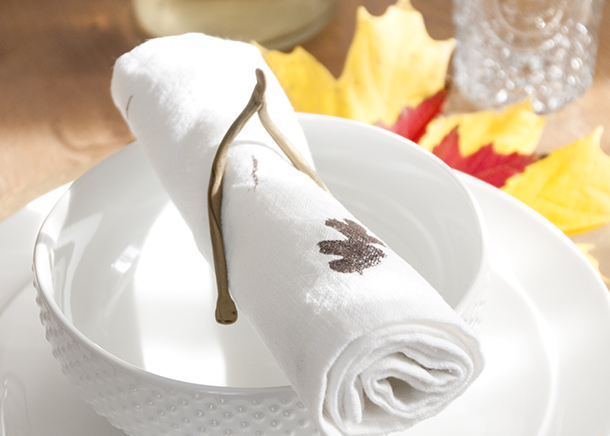 napkin on placesetting wide