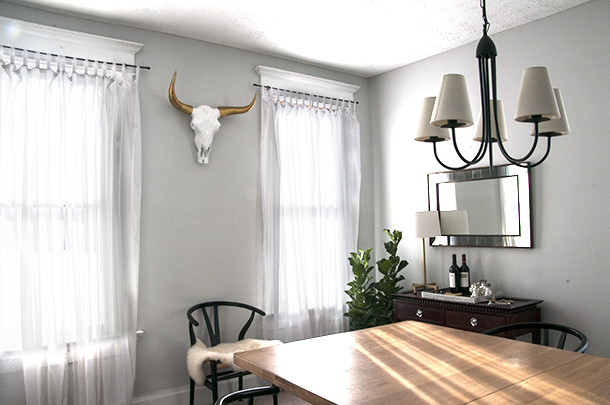 longhorn horns decor