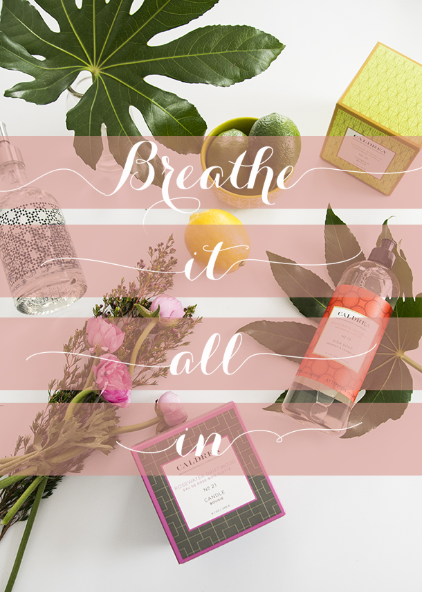 breath it all in