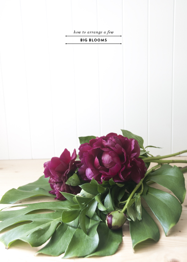 how to arrange peonies